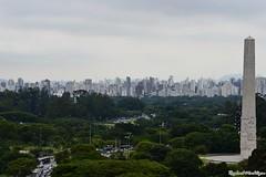 DSC_1471 (Machtigen) Tags: selva pedra city são paulo ibirapuera