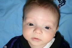 IMG_0165 (cjustice33) Tags: boy baby quin