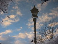 IMG_5881 (V31S70) Tags: sky reflection puddle streetlamp
