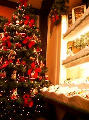 CIMG5662 (Mario Kraus) Tags: winter weihnachten 2006 weihnachtsmarkt ausflug dezember rothenburg kthewohlfahrt