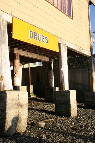 owl drugs from the shore