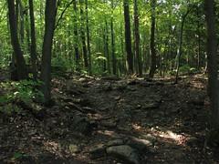 Kelso Hiking Sept 06 281 (travellingzenwolf) Tags: hiking kelso escarpment zenwolf