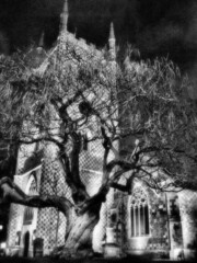 IMG_0372d Ghostly Minster (busb) Tags: uk blackandwhite bw tree church monochrome manipulated psp reading mono blackwhite gothic haunted ghostly minster gnarled saintmarythevirgin busb a710is