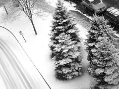 Snowy Street - by *clairity*