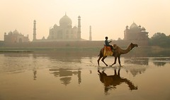 The Taj Mahal seen from across the Yamuna river