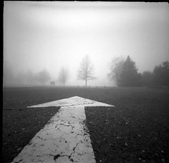 Forward (-= Bruce Berrien =-) Tags: trees landscape foggy pinhole arrow zero2000 zeroimage palabra westportct