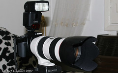 Front : My D Rebel XTi with Canon EF 70-200 mm F 2.8 L IS USM (Atef A. Iskander) Tags: ex canon eos photographer egypt photographers equipment gears 430 speedlite canonspeedlite430ex 430ex asyut canoneos30d lovephotography canonef70200mmf28lisusm xti canonef70200f28lisusm assiut 400d digitalrebelxti canoneosdigitalrebelxti atefiskander2007 atefiskander manfalout egyptphotographersgroup egyptianphotographersgroup egyptphotographers