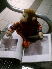 Scholarly Monkey (crazyangelblue) Tags: humor wtf megamall monkeybag