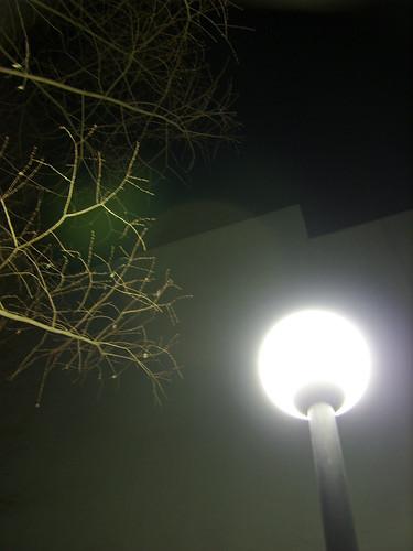 light — Jan 9