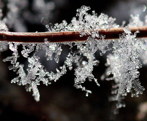 Creative photography ideas for the winter