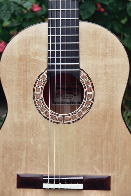 373189988_0ed5ea3cf3_z-Guitar-Luthier-LuthierDB-Image-2