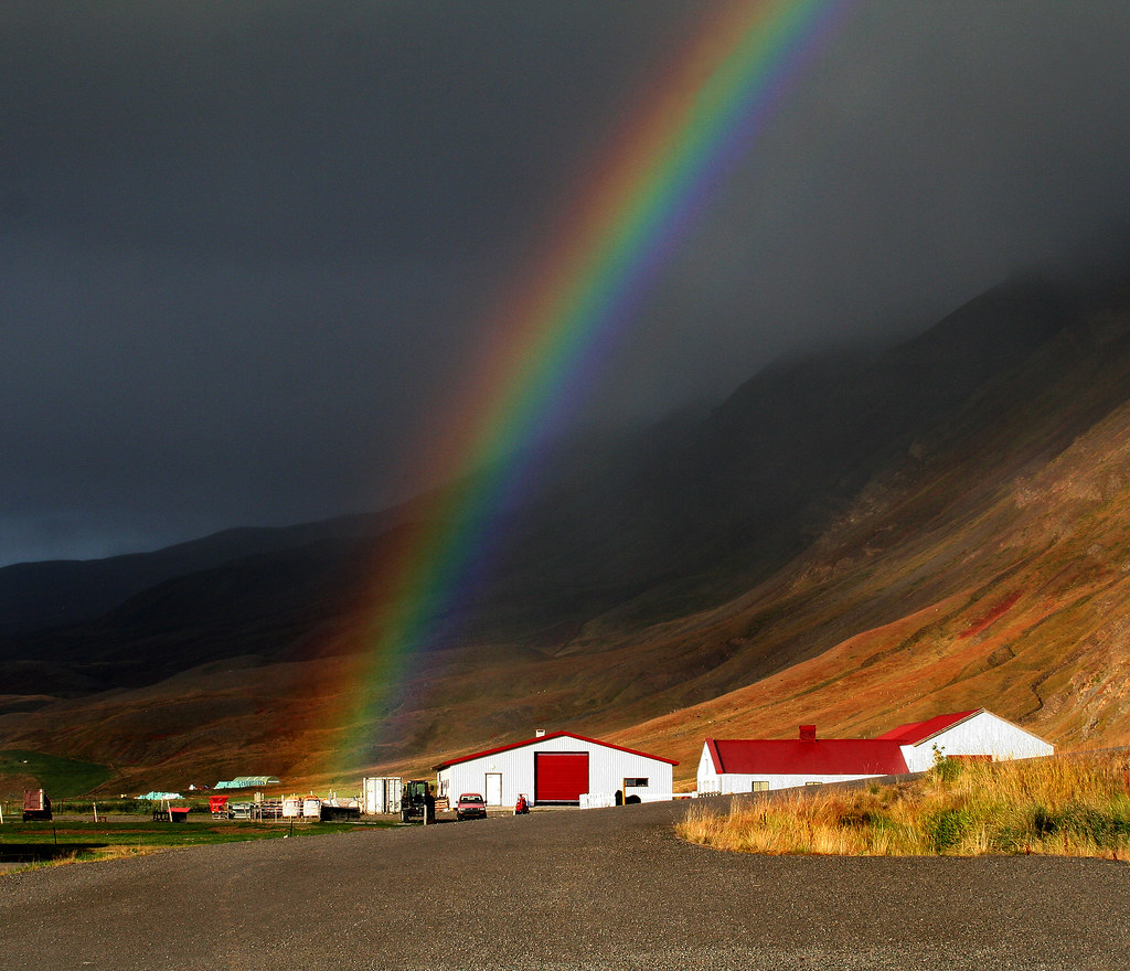 Beautiful Rainbows