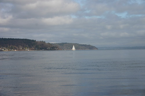 sailing in january