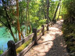 Laguna Verde, Parque Nac. Vicente Prez Rosales (Rod Chile) Tags: chile green lago path lagoon explore sendero lagunaverde llanquihue parquenacional vicenteprezrosales