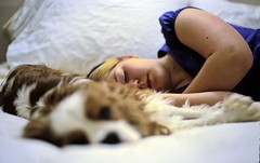 Nap time (clarkmackey) Tags: sleeping portrait dog film beauty female fuji sleep iso400 voigtlander slide poet spaniel resting 2007 sensia cavalierkingcharles bessar2 nancimackey womansleeping voigtlanderheliar50mmf20collapsible cavalieraffection