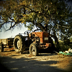 Parked Up, Hoping to Be Pumped Up In Kavousi (Terrorkitten) Tags: red colour tree 6x6 film square greek holga decay toycamera hellas lightleak plastic vehicles crete disused farms c41 fujipro400h  filmisnotdead bebbington terrorkitten  philbebbington
