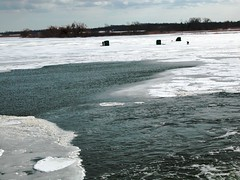 ice fishing (Bill Strong) Tags: grandriver icefishing dunnville