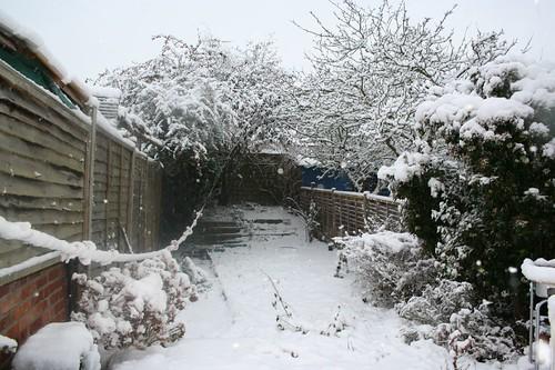 Snowday 1 013