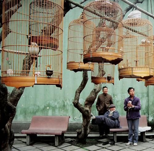 Birdcage Gathering  Guangzhou 1989