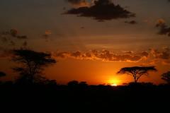 Sunrise over Serengeti (imanh) Tags: africa sky nature sunrise landscape tanzania dawn natuur afrika lucht serengeti zonsopgang iman heijboer imanh