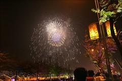 2007台灣燈會在嘉義171