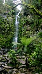 Erskine Falls - Victoria, Australia (fl0yd/hyp0th3rmi4) Tags: nature sightseeing australia victoria waterfalls greatoceanroad erskinefalls