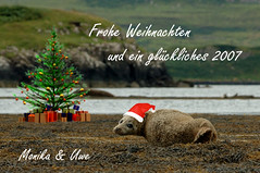 Frohe Weihnachten (fotouwe) Tags: christmas skye scotland nikon kayak d70 seal seakayak greetings merrychristmas weihnachtskarte dunvegan weihnachtsgrse neujahrswnsche fotouwe wwwmeiervisionde