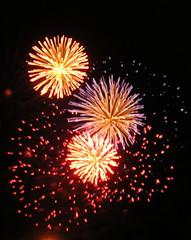 Bursts of fireworks