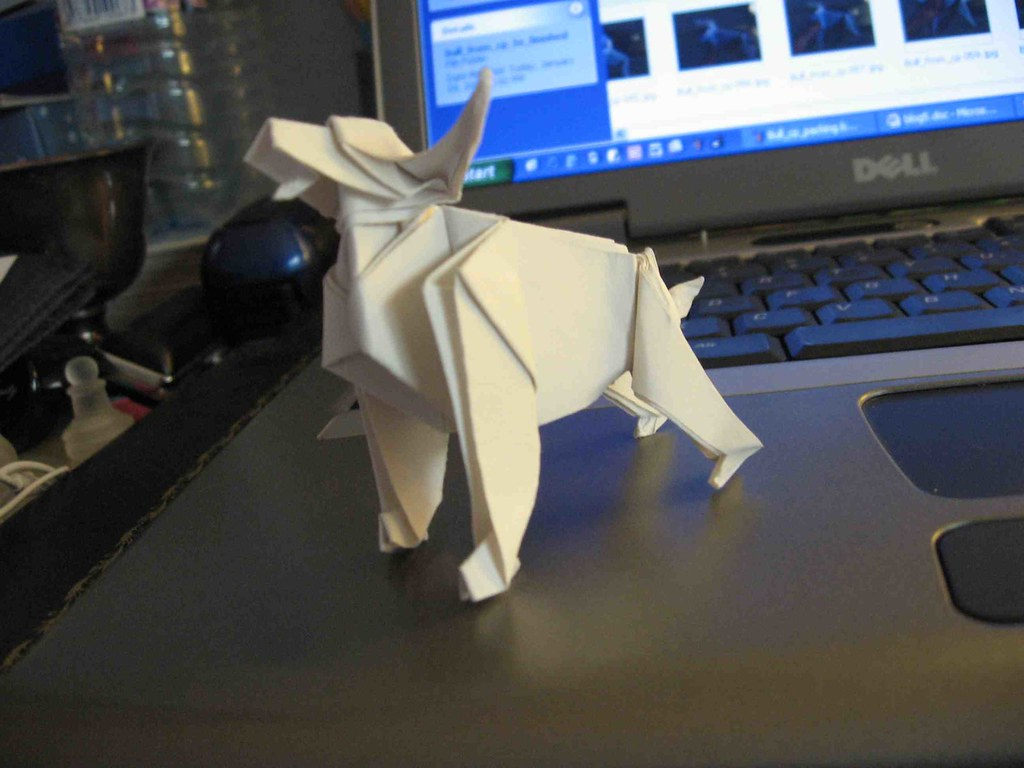 CREASE PATTERN AND ORIGAMI