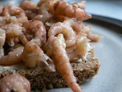 Fischerfrühstück mit Krabben 004