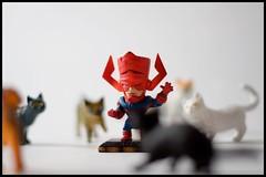 Galactus (Darny) Tags: cats toys galactus lightbox darny