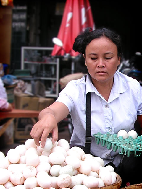 Putting all of your eggs in one basket, Cambodia