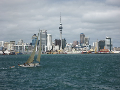 Lively Auckland