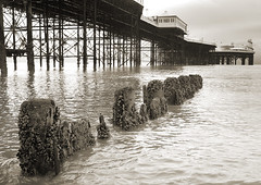 Muscle Posts (Andy C - Brighton) Tags: sea water muscles pier brighton posts groins