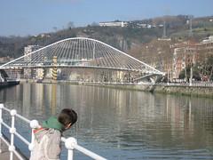 Puentes sobre la r�a