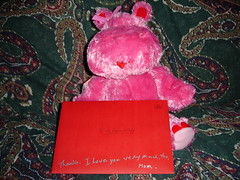 DSC03019 (Faded Photograph) Tags: bear pink red stuffedtoy green art love colors gifts envelope end valentines couches redo onecentshot valentine07