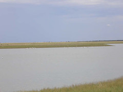 The pan fills with water in the rainy season.JPG