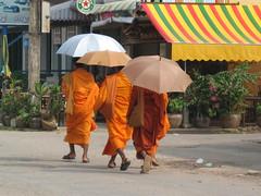 Battambang monks