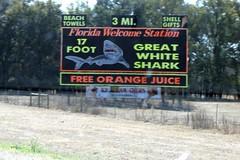 I-75 in North Florida