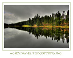 A  GREY DAY - BUT GOOD FOR FISHING (Magdalen Green Photography) Tags: red reflection forest grey scotland fishing scottish fir loch tayside abigfave