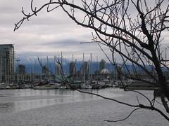 VancouverFeb07_11