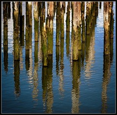 pilings and reflections (jody9) Tags: topf25 oregon reflections bravo columbiariver astoria pilings abigfave impressedbeauty
