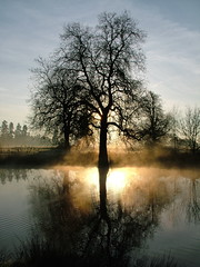 Slough is Beautiful... at times (Kevin Day) Tags: uk england mist lake topf25 water topv111 1025fav 510fav sunrise dawn britain buckinghamshire slough kevday langley countrypark