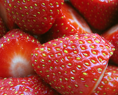 Strawberries (joyrex) Tags: desktop red wallpaper food texture topv111 fruit 510fav catchycolors strawberry pattern structure explore aardbei