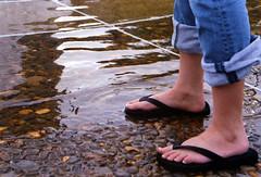 megans feet (world_of_noise) Tags: black feet water girl rock portland foot flood megan jeans flipflops pdx pentaxmesuper footfetish waterfrontpark regular