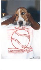 homer hankie began in Minneapolis ! - by bulldog1
