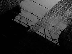 (Henrico Dohara) Tags: chuva reflexo pretoebranco belm estaodasdocas