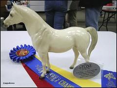 Open Plastic Halter - Reserve Grand Champion Overall (appaIoosa) Tags: horse animal caballo cheval appaloosa mare arabian pferde cavallo paarden breyer appaloosa equilocity
