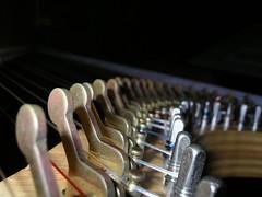 Harp - by spike55151