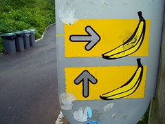 Bananas, right & straight on (George Pollard) Tags: cornwall june2005 holiday casio exilimexz57 edenproject bananas fruit sign straighton right carparking parking stickers banana